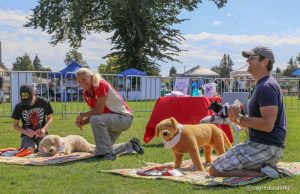 Pet First Aid Instructors at Delta Pet Expo Demo