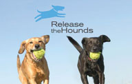 release-the-hounds-logo