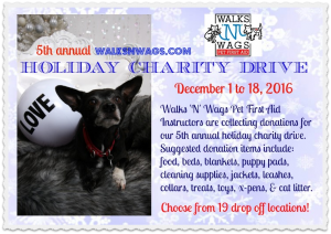 wnw-holiday-charity-drive-2016-final