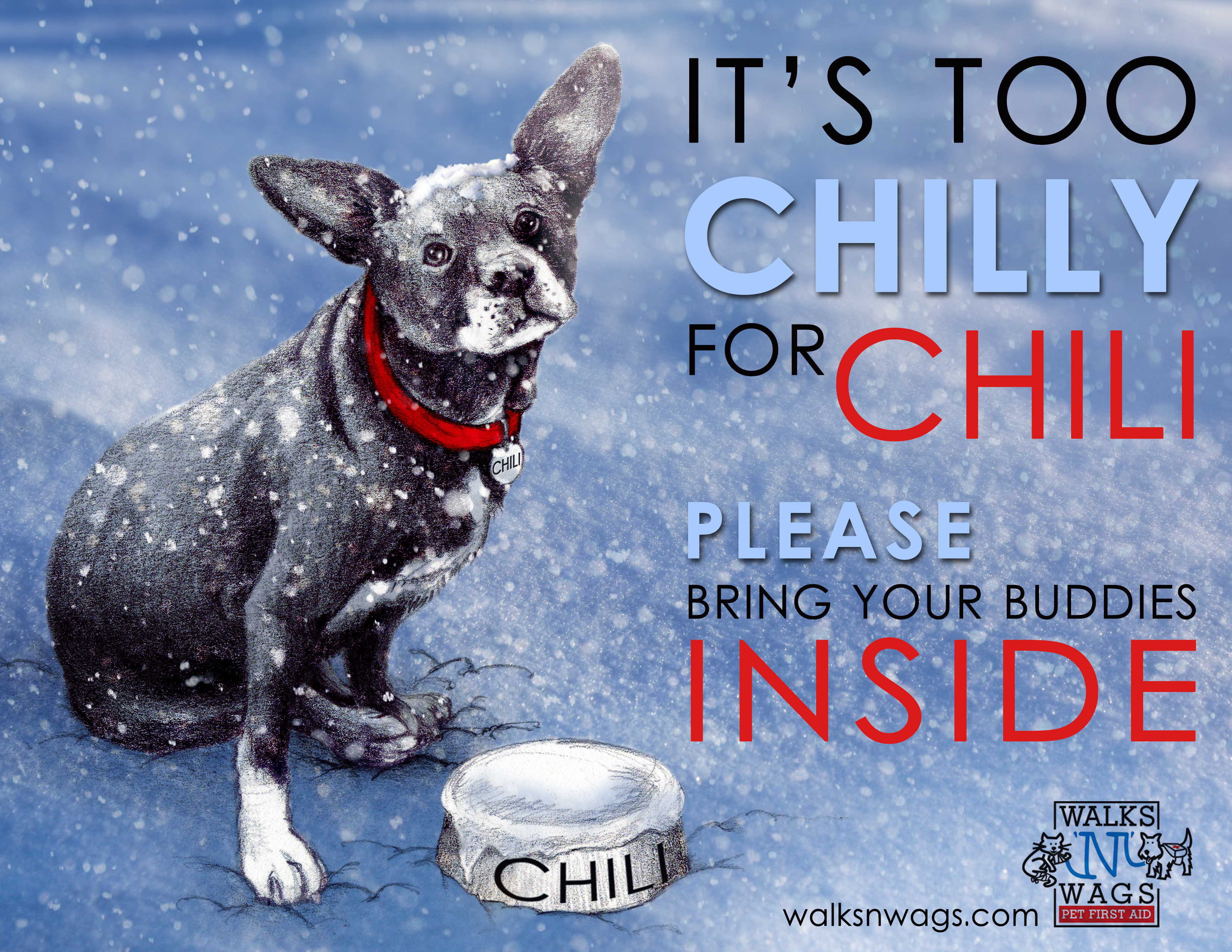 pics How to Keep Your Pets Safe in Winter